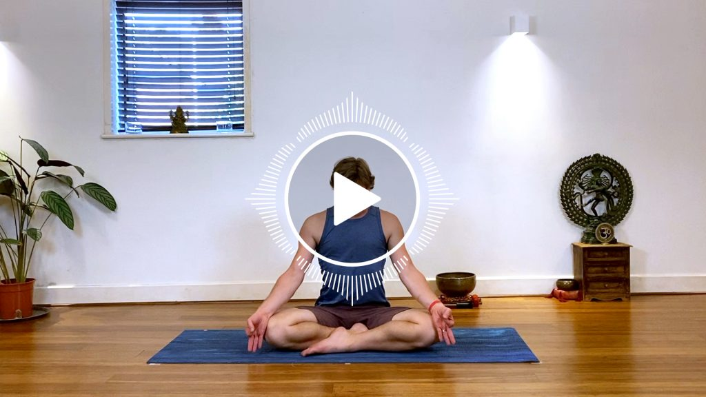 online beginners yoga course
